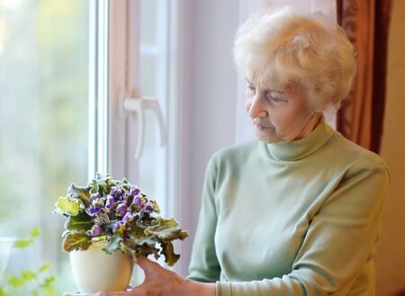 Portrait of beautiful senior woman with curly gray hair. Elderly is standing by the window and taking care of home flowers. Active longevity concepts. 스톡 콘텐츠