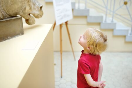 Little boy looking at sculpture of horses head. Aesthetic and art education of kids.