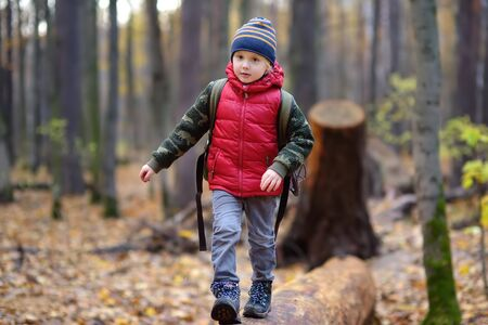 Little boy scout during hiking in autumn forest. Concepts of adventure, scouting and hiking tourism for kids.