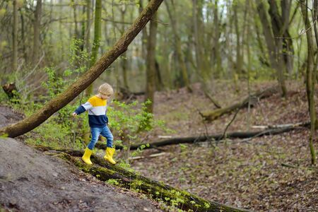 Preschooler child wearing yellow rain boots walking in forest after rain. Kid playing and having fun in sunny spring or summer day. Outdoors games for children. Stock Photo