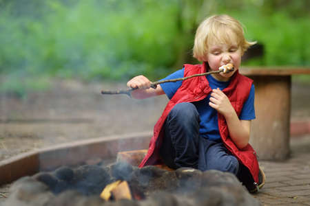 Little boy during family hiking roasting marshmallow candy on wooden stick at bonfire. Child having fun at camp fire. Summer activity for family with kids in forest.