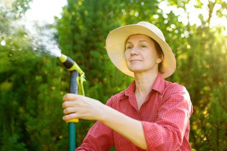 Mature woman gardener wearing straw hat watering plants with hose with sprinkler in sunny backyard. Gardening. Seasonal work in the garden. Stockfoto