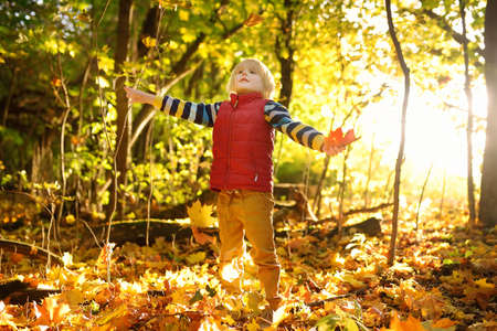 Little boy having fun during stroll in the forest at sunny autumn day. Child playing maple leaves. Active family time on nature. Hiking with little kids. Leaves rustle. Stockfoto