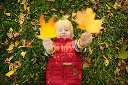 Little boy having fun during stroll in forest at sunny autumn day. Playful child laying on grass and playing with maple leafs. Hiking with little kids. Autumn outdoor activity for family with kids. Standard-Bild