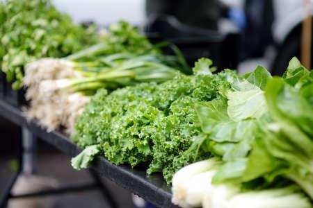 Fresh bio vegetables and herbs on street farmer market. Typical local agricultural fair of weekend. Sale of organic veggies - kale salad, parsley, dill, coriander, green onions, latuck, herbs. Standard-Bild