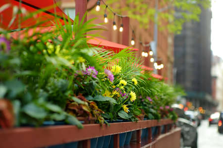 Street cafe in Manhattan. Outdoors restaurant under umbrellas and fashion decoration with flowers, decorative plants and flashlights.