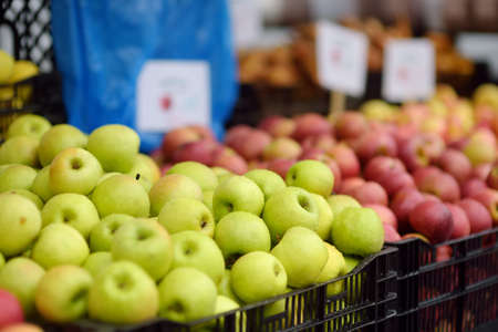 Fresh healthy bio red and green apples on street farmer market. Typical local agricultural fair of weekend. Ripe organic fruits. Sale of vegan food. Small business