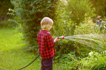 Funny little boy watering plants and playing with garden hose with sprinkler in sunny backyard. Preschooler child having fun with spray of water. Summer outdoors activity for kids. Standard-Bild