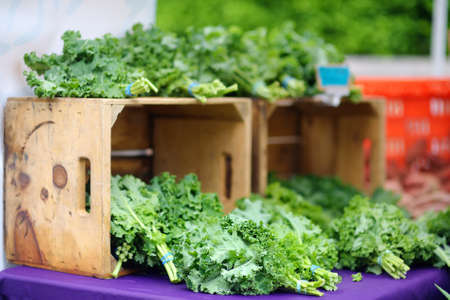 Fresh bio herbs on street farmer market. Typical local agricultural fair of weekend. Sale of bunch organic kale salad