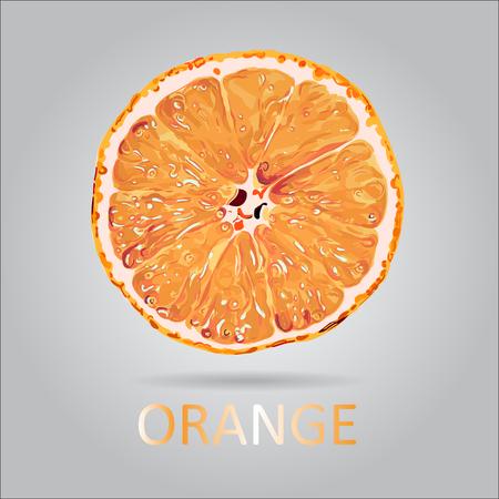 Vector Orange Slice Illustration