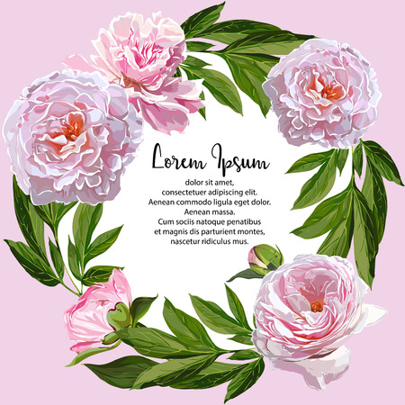 Vector Peonies Frame Template Illustration