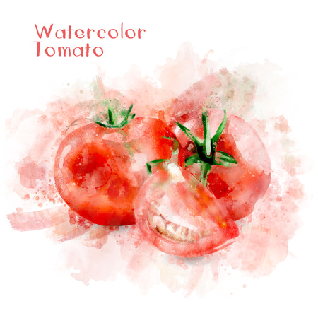 Watercolor Tomatoes Illustration