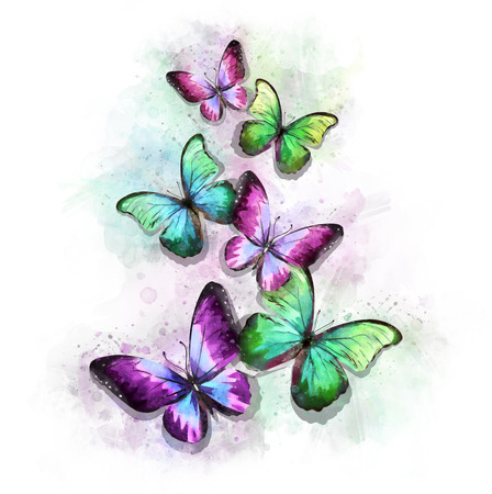 Watercolor Colorful Butterflies Illustration