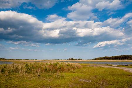 Salt marsh wetlands under blue sky with fluffy clouds at Assateague Island National Seashore, Maryland