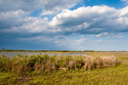Salt marsh wetlands under blue sky with fluffy clouds and rain in the distance at Assateague Island National Seashore, Maryland 版權商用圖片