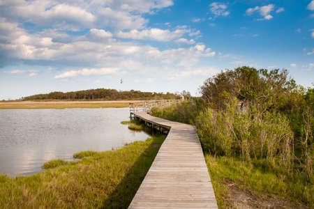 Boardwalk through salt marsh wetlands under a blue sky with fluffy clouds at Assateague Island National Seashore, Maryland