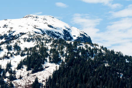 A snowy mountain summit and evergreen trees in southern Alaska