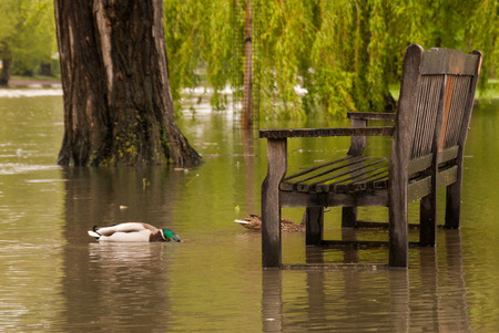 A wooden riverside park bench surrounded by flood water when the river burst its banks following heavy rain  Stock Photo