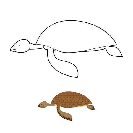 water turtle: Water turtle coloring book. Marine animal with shell. Vector illustration Illustration