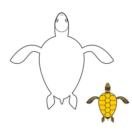 reptiles: Turtle coloring book. Marine reptiles. Vector illustration