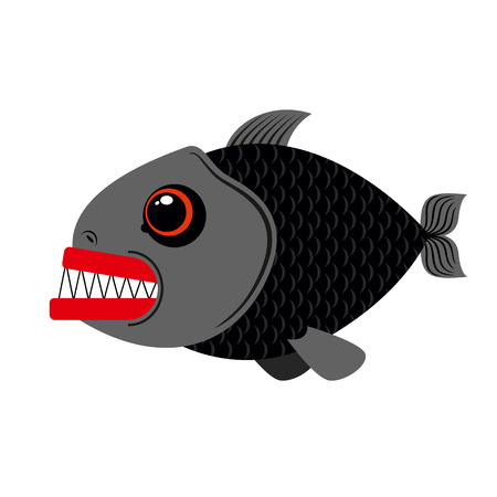slashing: Piranha marine predator on white background.Terrible sea fish with sharp teeth. Scary eyes and sharp teeth.