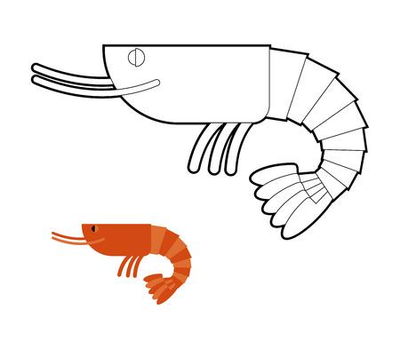 plankton: Libro para colorear de camar�n. Cancroide Marina Peque�o. Oc�ano plancton. Vectores