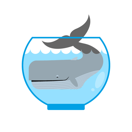 mammals: Whale in  Aquarium. Large sea animal is not put into Aquarium. Tail is sticking out of  water. Mini marine mammals. Illustration