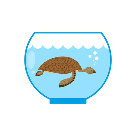 captivity: Sea turtle in an aquarium. Water animal Pet in captivity. Illustration