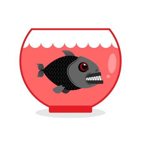 Piranha in Aquarium. Dangerous Home sea creature. Wild Predator at home. Wicked toothy fish in captivity. Illustration
