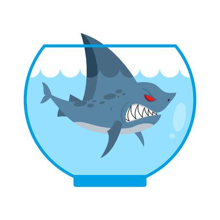 Shark in Aquarium. Angry Marine predator with large teeth. Home Marine pet. Tiny water animal.