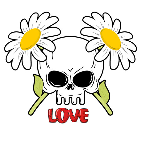 german chamomile: Skull and flowers. Daisies and head of skeleton. Crossed field flowers. Illustration