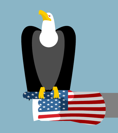patriotic eagle: American patriotic eagle hunting. Bald eagle sitting on glove of USA flag. National symbol of America