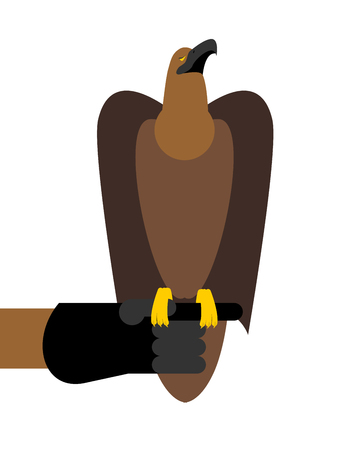 eather: Falcon hunting. Birds of prey sitting on hand. Trained hunting bird sitting on eather glove Illustration