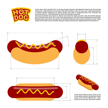 reference: Hot dog infographics standard. reference  sizes of fast food. Drawing, bread and sausages scheme. Template for preparation of hot dogs