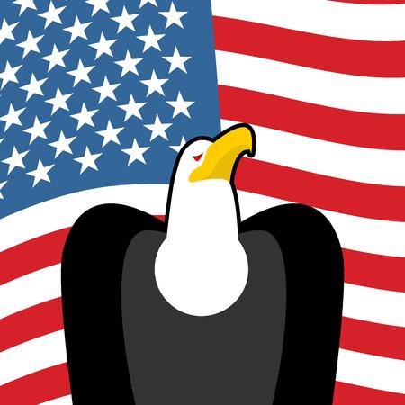 bald eagle: Bald Eagle USA national symbols. Large birds of prey and  flag of America. American patriotic sign