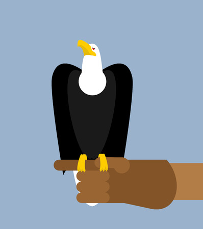 goshawk: Eagle hunting. Bald eagle on his arm. Trained wild bird of prey. Hawk sitting on glove Illustration