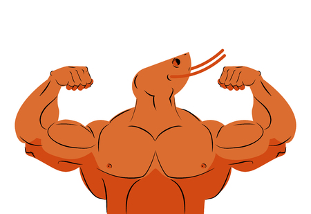 plankton: Strong athlete shrimp. Fitness marine animal athlete with huge muscles. Bodybuilder plankton. Sports team mascot