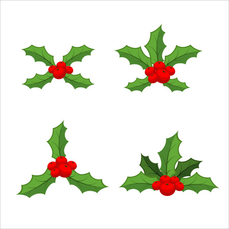 a sprig: Sprig of mistletoe set. Traditional Christmas plant. Holiday red berry with green leaves. Decorating for national Festive on white background. xmas design template