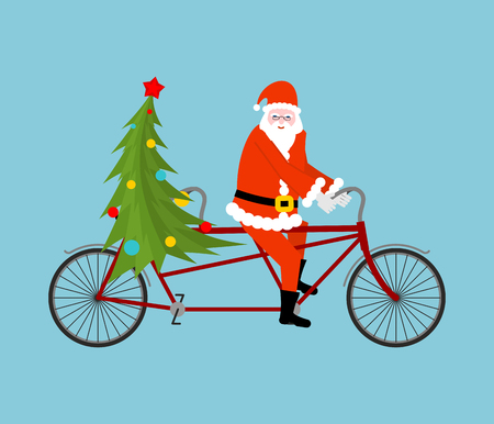 Santa Claus and Christmas tree ride bicycle. Christmas tandem. Old man in red suit and a fur-tree new year date. xmas template