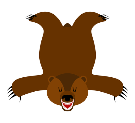 bearskin: Grizzly Bearskin. Skin of bear isolated. Hunter trophy isolated. Fur carpet