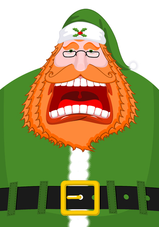 Irish Santa (Daddy of Christmas). Santa Claus Ireland ( Daidi na Nollag ) Irish language. Christmas old man in green clothes. Sprig of mistletoe on cap. Traditional New Year grandfather