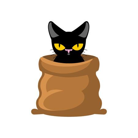 Cat in sack. Pet in bag. Allegory bad buy