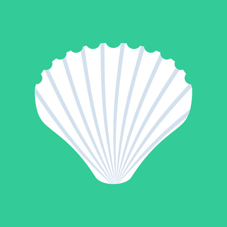 mollusc: Shell isolated. White mussels on green background. Seashell nacre Illustration
