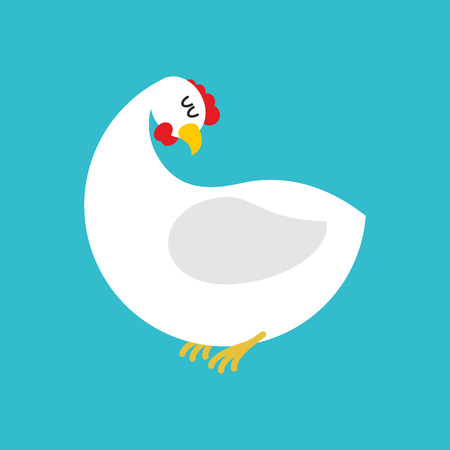 White hen isolated. Farm chicken bird on blue background Illustration