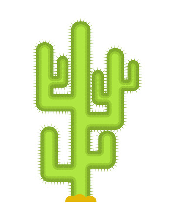Cactus isolated. Large peyote from desert on white background. Illustration