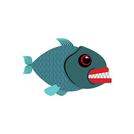 Piranha isolated. See Predatory fish on white background