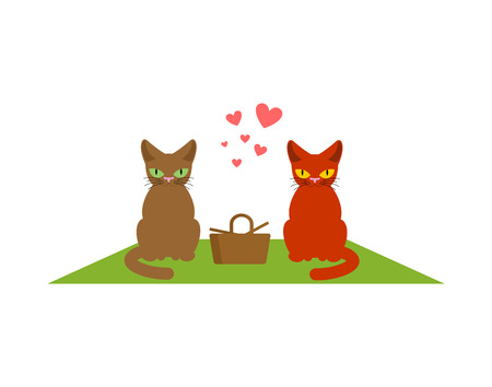 Cat lovers on picnic. Meal in nature. blanket and basket for food on lawn. Pet Romantic date. Cats lifestyle
