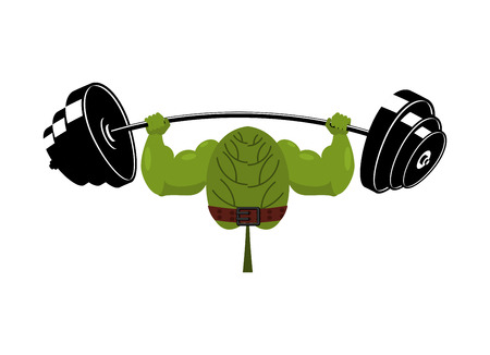 Strong spinach and barbell. Healthy useful plant athlete. Food for athletes