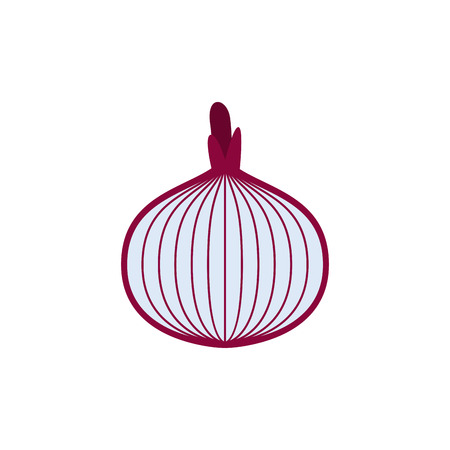 intact: Onions cut isolated. Vegetable slice on white background