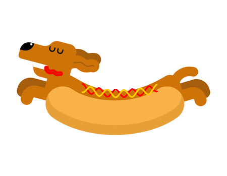 Hot dog dachshund. Pet Animal Hotdog. Vector illustration